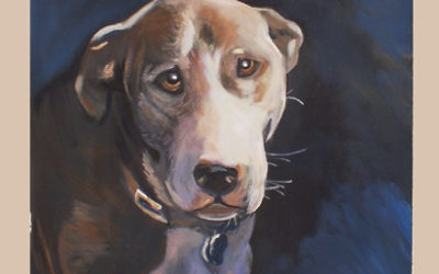 Pet Portrait Helps Lend a Paw