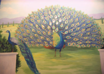 peacock_muralimg_0761
